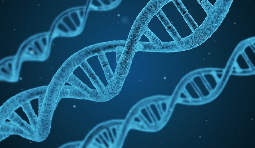 About the Massification of Direct-to-consumer genetic tests